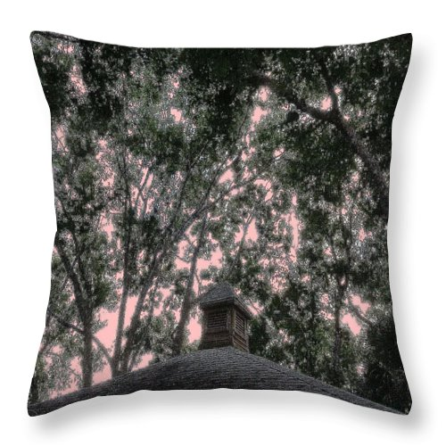 Square Throw Pillow featuring the digital art Sentinel by Eikoni Images
