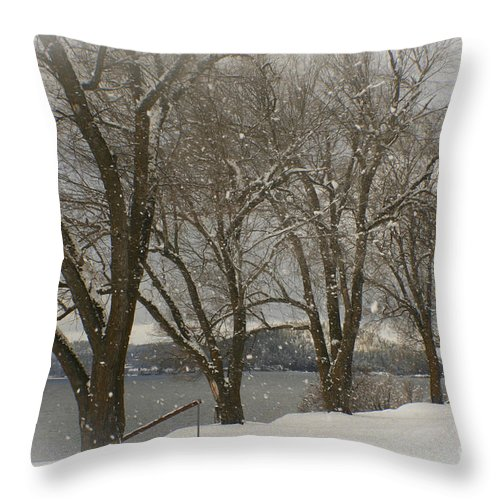 Trees Throw Pillow featuring the photograph Sentinels In The Snow by Idaho Scenic Images Linda Lantzy