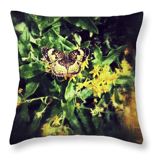Butterfly Insect Flowers Throw Pillow featuring the photograph Sepia Butterfly by Rachel Crozier