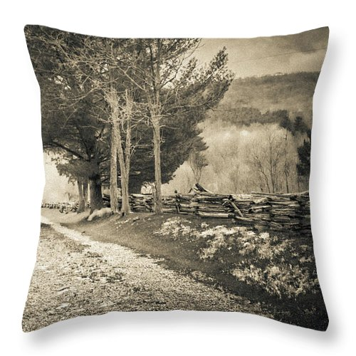 Landscape Throw Pillow featuring the photograph Sepia Road by Jim Love