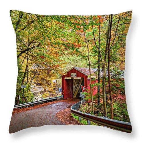 Pennsylvania Throw Pillow featuring the photograph Serendipity by Steve Harrington