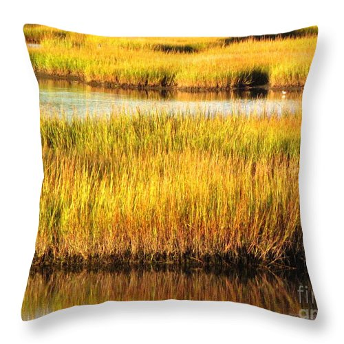 Water Throw Pillow featuring the photograph Serene Grasses by Sybil Staples