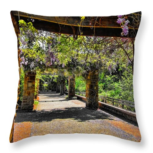Walkway Throw Pillow featuring the photograph Serene Walkway by Douglas Barnard
