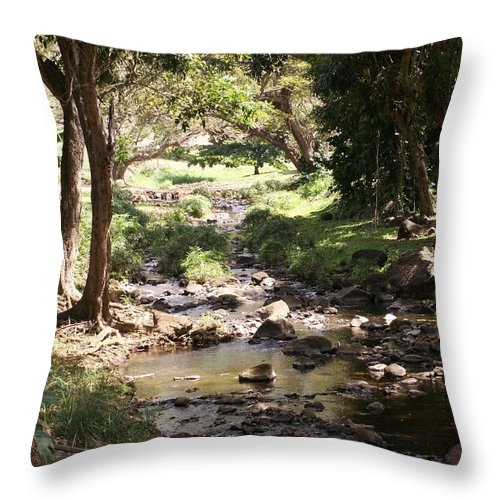 Kauai Throw Pillow featuring the photograph Serenity by Amy Fose
