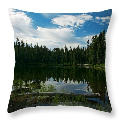 Lake Throw Pillow featuring the photograph Serenity by Randall Ingalls