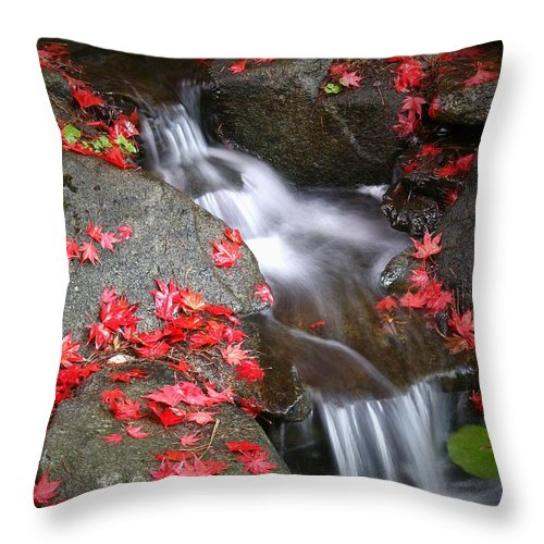 Autumn Stream Serene Tranquil Leaves Red Throw Pillow featuring the photograph Serenity by Winston Rockwell