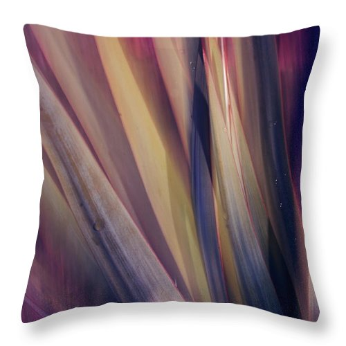 Plant Abstract Nature Blur Colors Pink Blue Yellow Geen Throw Pillow featuring the photograph Shade Of Color by Linda Sannuti