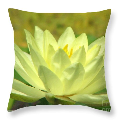 Lillypad Throw Pillow featuring the photograph Shades by Amanda Barcon
