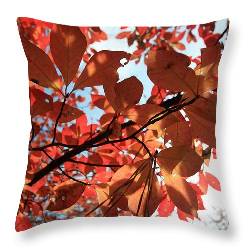 Leaves Throw Pillow featuring the photograph Shades Of Autumn by Mary Haber