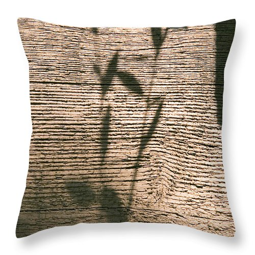 Throw Pillow featuring the photograph Shadow by Clayton Bruster