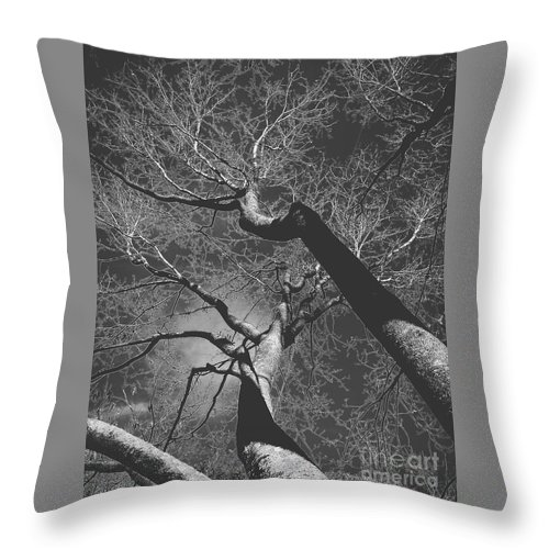 Black And White Throw Pillow featuring the photograph Shadow Of The Day by Heather Taylor