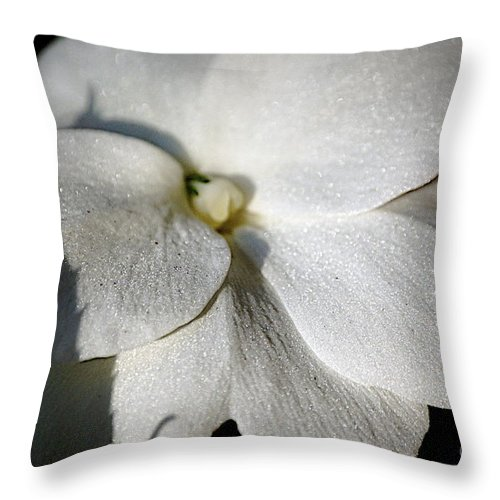 Impatiens Throw Pillow featuring the photograph Shadow On White by Faith Harron Boudreau
