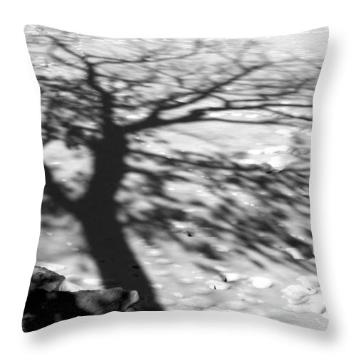 Shadow Throw Pillow featuring the photograph Shadow Tree Herrick Lake Naperville Illinois by Michael Bessler