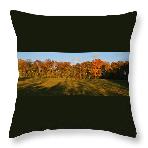 Fall Throw Pillow featuring the photograph Shadows Bow by Tim Nyberg