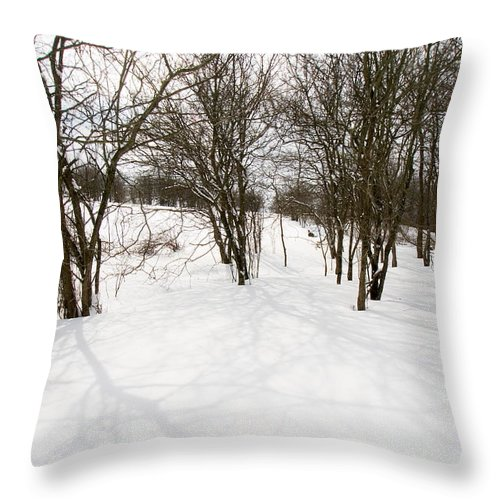 Ohio Throw Pillow featuring the photograph Shadows Of Winter by Amanda Kiplinger
