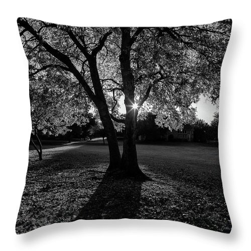 Throw Pillow featuring the photograph Shadows by Rod Lindley