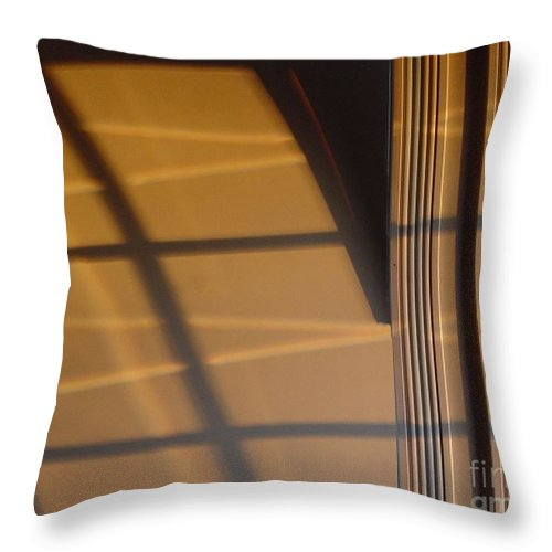 Windows Throw Pillow featuring the digital art Shadows by Ron Bissett