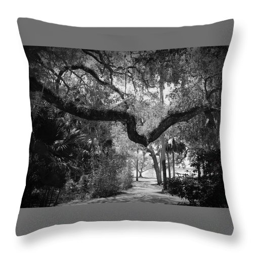 Shannon Throw Pillow featuring the photograph Shadowy Pathway by Shannon Sears