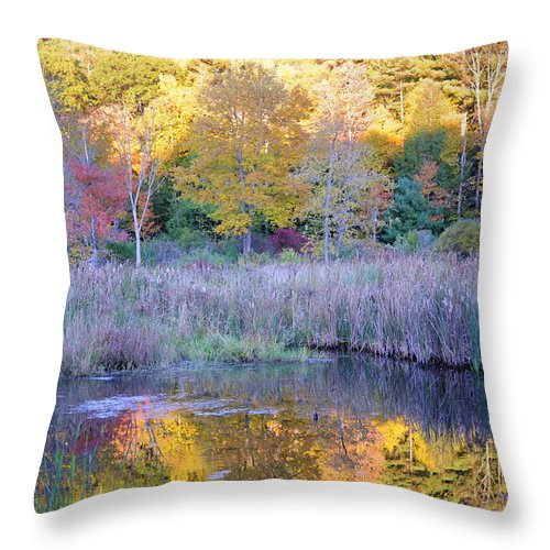 Fall Foliage Throw Pillow featuring the photograph Shady Pond by Tom Heeter