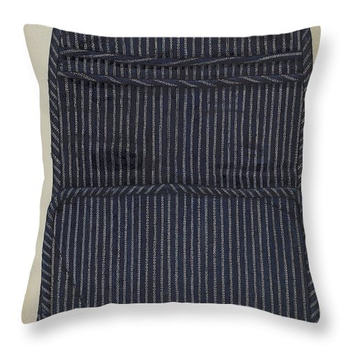 Throw Pillow featuring the drawing Shaker Case by Betty Fuerst