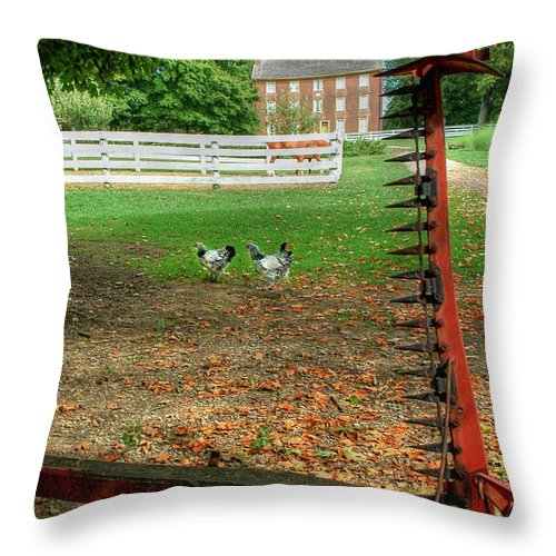 Shaker Throw Pillow featuring the photograph Shaker Chickens by Sam Davis Johnson