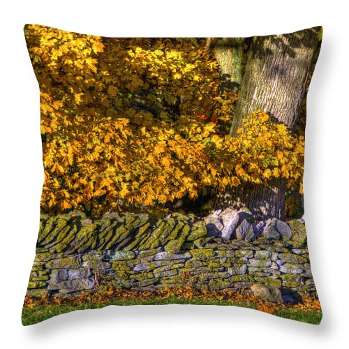 Shaker Throw Pillow featuring the photograph Shaker Stone Fence 4 by Sam Davis Johnson