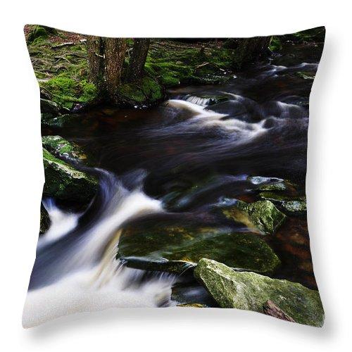 West Virginia Throw Pillow featuring the photograph Shays Run by Thomas R Fletcher
