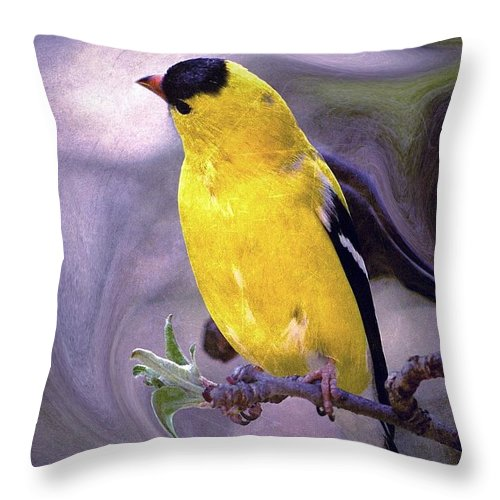 Enjoy Throw Pillow featuring the photograph She Enjoyed The Softness Of Twilight... by Arthur Miller