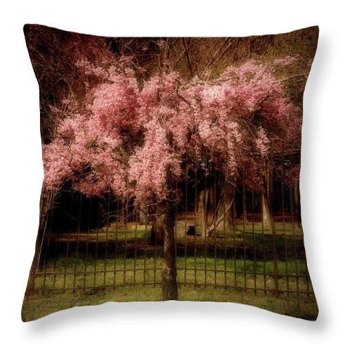 Cherry Blossom Tree Throw Pillow featuring the photograph She Weeps - Ocean County Park by Angie Tirado