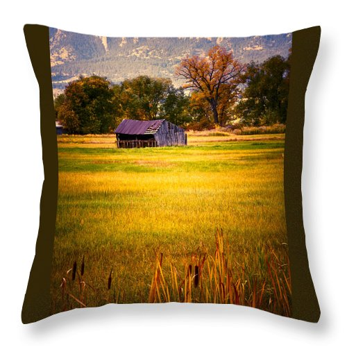 Shed Throw Pillow featuring the photograph Shed In Sunlight by Marilyn Hunt