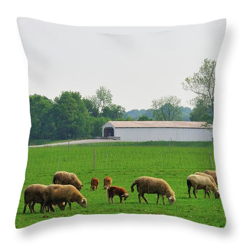 Bridge Throw Pillow featuring the photograph Sheep And Covered Bridge by David Arment