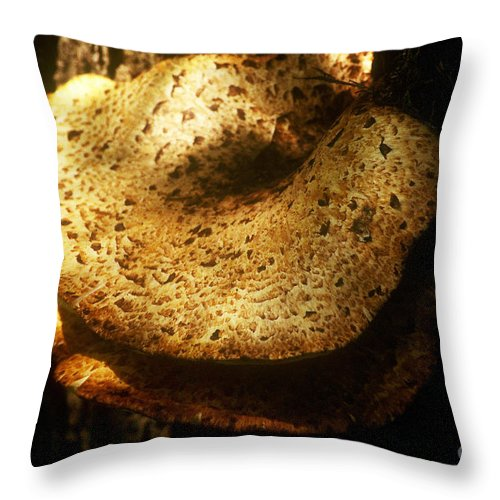 Background Throw Pillow featuring the photograph Shelf Mold by Alan Look