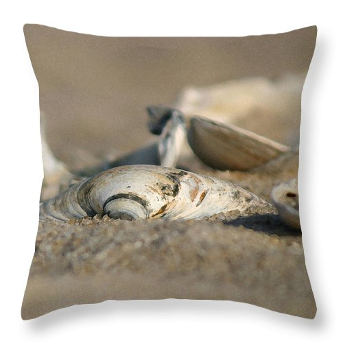 Seascape Throw Pillow featuring the photograph Shell Pile by Mary Haber