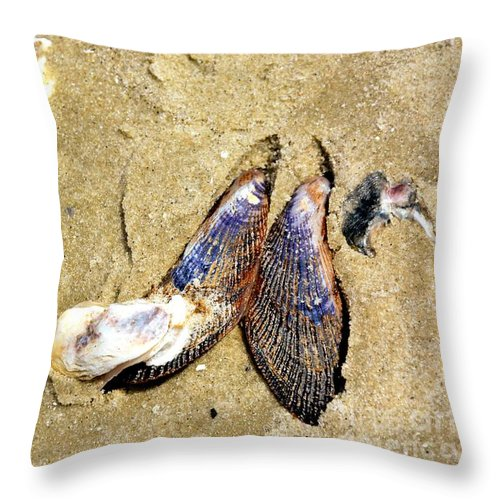 Seashells Throw Pillow featuring the photograph Shells On The Beach Of Jekyll by Katherine W Morse