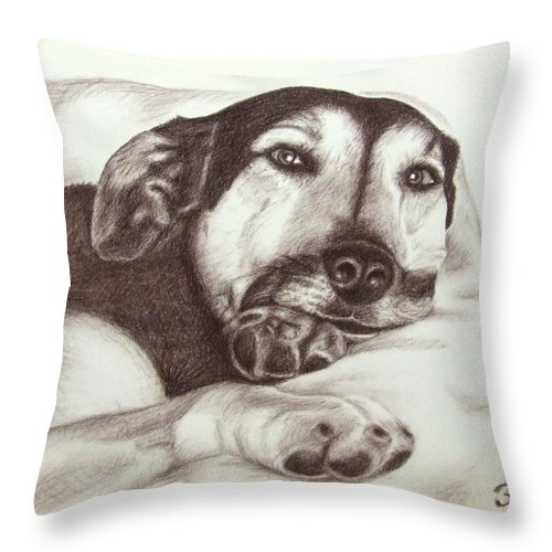 Dog Throw Pillow featuring the drawing Shepherd Dog Frieda by Nicole Zeug