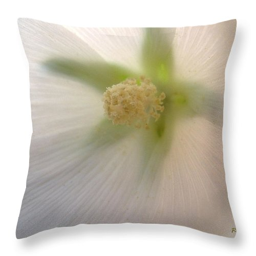 Blossom Throw Pillow featuring the photograph Shimmer by RC DeWinter