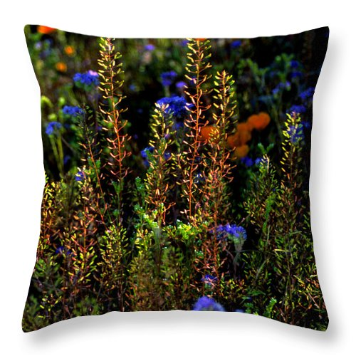 Flowers Throw Pillow featuring the photograph Shimmers by Randy Oberg