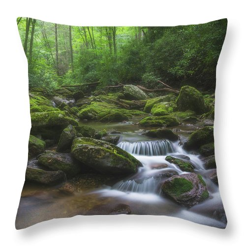 Landscape Throw Pillow featuring the photograph Shining Creek by Dawnfire Photography