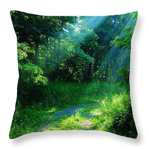 Morning Throw Pillow featuring the photograph Shining Light by Thomas R Fletcher