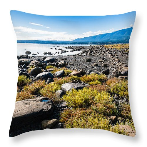 Landscapes Throw Pillow featuring the photograph Ships Point by Claude Dalley