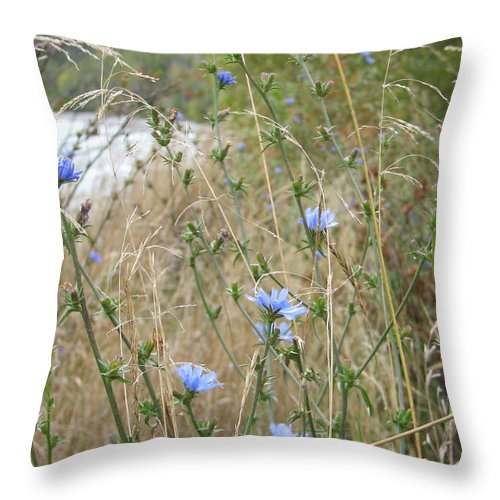 Flower Throw Pillow featuring the photograph Shore Flowers by Kelly Mezzapelle