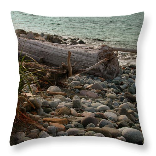 Shoreline Throw Pillow featuring the photograph Shore by Joseph G Holland