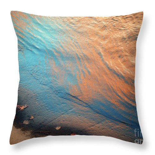 Water Throw Pillow featuring the photograph Shoreline by Tara Turner