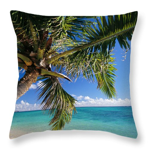 Beach Throw Pillow featuring the photograph Shoreline Waters by Dana Edmunds - Printscapes