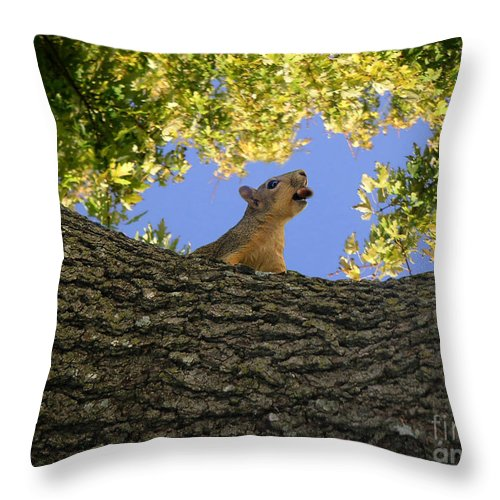 Nature Throw Pillow featuring the photograph Show But Not Tell by Lucyna A M Green