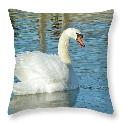 Swan Throw Pillow featuring the photograph Showing Off by Diana Hatcher