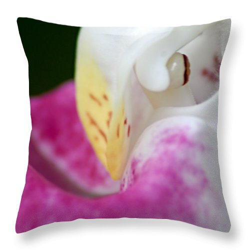 Showy Ladyslipper Throw Pillow featuring the photograph Showy Ladyslipper Up Close And Personal by Larry Ricker