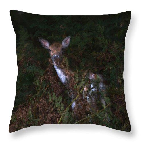 Cervidae Throw Pillow featuring the digital art Shy Fallow Deer 4 by Roy Pedersen