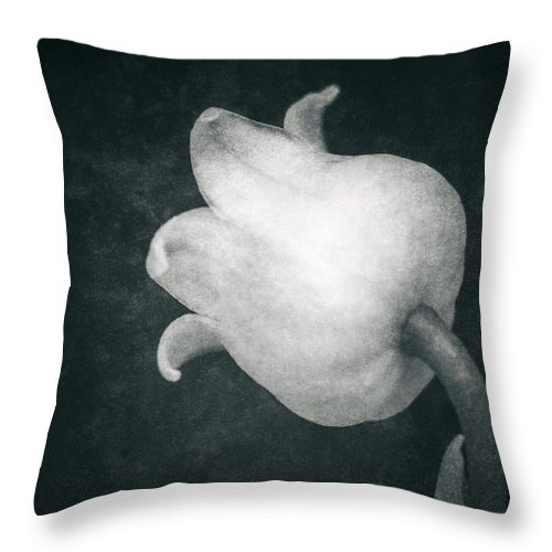 Lily Of The Valley Throw Pillow featuring the photograph Shy by Wim Lanclus