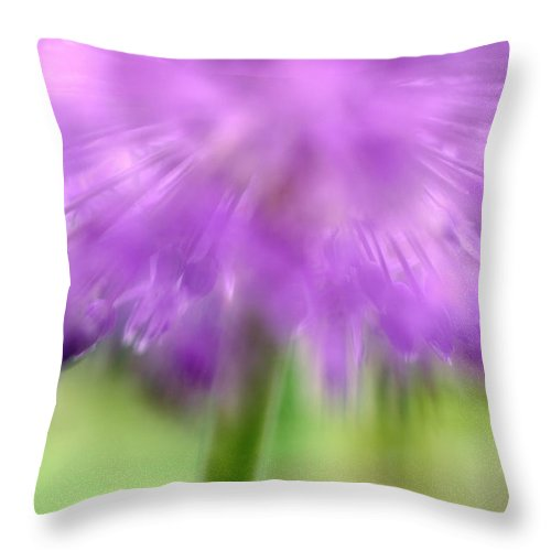 Flowers Throw Pillow featuring the photograph Sicilian Honey Lily by Silke Magino
